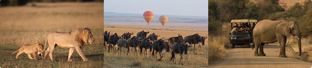 Pilanesberg-Safari-Tour